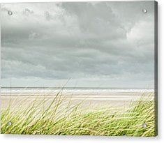 Marram Grass On Beach By Sea Acrylic Print by Dune Prints by Peter Holloway