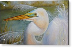 Acrylic Print featuring the painting Marsh Master by Marlyn Boyd