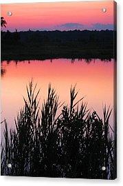 Acrylic Print featuring the photograph Marsh Sunset by Clara Sue Beym