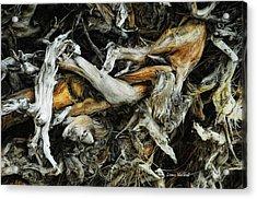 Mass Grave Acrylic Print by Donna Blackhall