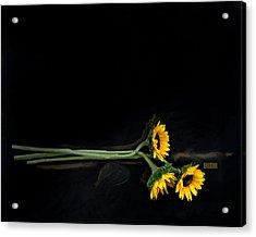 Master Sunflowers Acrylic Print by J R Baldini M Photog