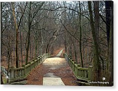 Mattheson State Park Acrylic Print by Tina Karle