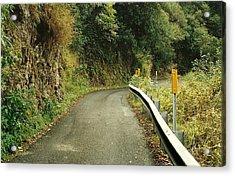 Maui Highway Acrylic Print by Marilyn Wilson
