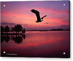 Acrylic Print featuring the photograph Mauve Sundown Eagle  by Randall Branham