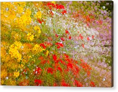 May Impression Acrylic Print by Bobbie Climer