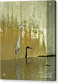Me And My Shadow Acrylic Print