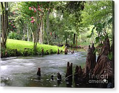 Acrylic Print featuring the photograph Mead Gardens by Jennifer Zelik