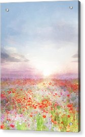 Meadow Flowers Acrylic Print