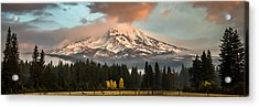 Acrylic Print featuring the photograph Meadow Views by Randy Wood