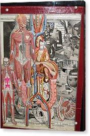 Medical Acrylic Print by Francisco Magos