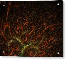 Medusa Acrylic Print by Lourry Legarde