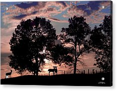 Meeting In The Sunset Acrylic Print by Bill Stephens