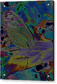 Melting Colors Acrylic Print