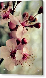 Acrylic Print featuring the photograph Memories by Robin Dickinson