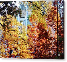 Acrylic Print featuring the photograph Memphis College Of Art Overton Park Memphis Tn by Lizi Beard-Ward
