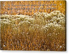 Men Are Like Grass Acrylic Print by Carolyn Marshall