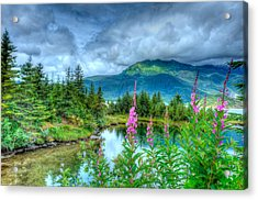 Mendenhall Fireweed Acrylic Print by Don Mennig