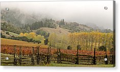 Mendocino In Autumn Acrylic Print by Denice Breaux