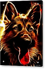 Mens Best Friend - German Shepherd Portrait Acrylic Print