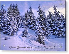 Merry Christmas And A Wonderful New Year Acrylic Print by Sabine Jacobs