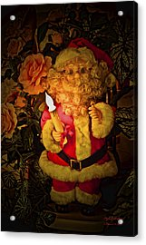 Acrylic Print featuring the photograph Merry Christmas To You by Itzhak Richter