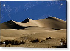 Mesquite Dunes At Death Valley Acrylic Print