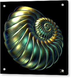 Metallic Nautiloid Acrylic Print