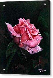 Michele's Rose Acrylic Print