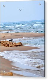 Michigan Seashore Acrylic Print by Tina Karle
