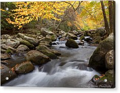 Mid Stream Acrylic Print by Charles Warren