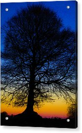 Midnight Calm Acrylic Print by Rob Hemphill