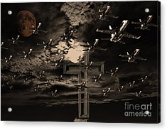 Midnight Raid Under The Golden Moonlight Acrylic Print by Wingsdomain Art and Photography