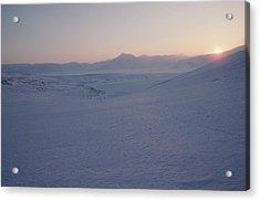 Midnight Sun Hovers Above Polar Acrylic Print by Gordon Wiltsie