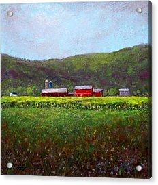 Midsummer In Pennsylvania Acrylic Print by Bob Richey