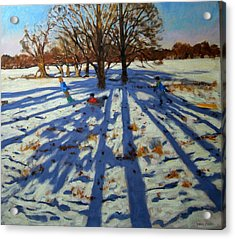 Midwinter Acrylic Print by Andrew Macara
