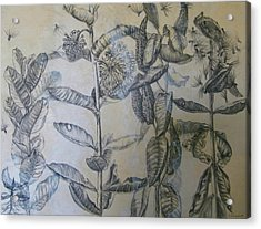 Milkweeds Acrylic Print by Ruth Greenlaw