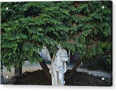 Mill Valley, California, Usa Tree Acrylic Print by Keenpress