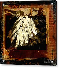 Mimosa Leaf Collage Acrylic Print