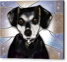Min Pin Acrylic Print by Melisa Meyers