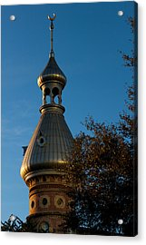 Acrylic Print featuring the photograph Minaret And Trees by Ed Gleichman