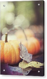 Mini Pumpkins With Leaves Acrylic Print by Samantha Wesselhoft Photography