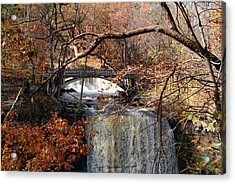 Minneopa In The Fall Acrylic Print by Steven Clipperton
