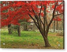 Minuteman National Historic Park Late Foliage Acrylic Print