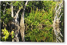 Acrylic Print featuring the photograph Mirror Pond by Anne Mott