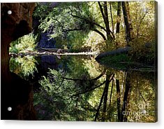 Acrylic Print featuring the photograph Mirror Reflection by Tam Ryan