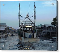 Miss Jerry's Acrylic Print by Marilyn Holkham