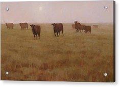 Missouri Morn Acrylic Print by Brian Freeman