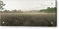 Misty Grounds Acrylic Print by Jan W Faul