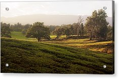 Acrylic Print featuring the photograph Misty Maui Morning by Trever Miller
