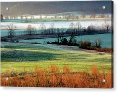 Misty Morning At Cades Cove Acrylic Print by Dave Mills